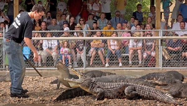 Rapid City 39 S Reptile Gardens