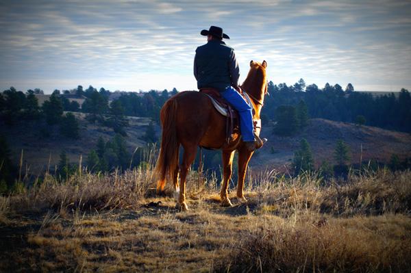 south dakota photo contest  80700