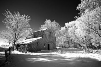 Unused barns surrounded by trees make for great photo ops on a frosty morning.