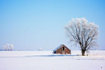 Old man winter in north dakota