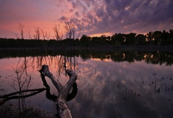 The serene waters of Mud Lake after sunset.