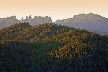 Custer State Park's high ground: Little Devil's Tower, the Cathedral Spires and Harney Peak.