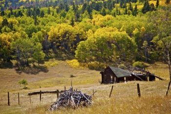 An unused log building on the shoulders of Custer Peak in the Black Hills.