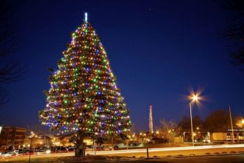 Two holiday icons of Sioux Falls — Dorothy's Tree and a decked-out KELO TV tower.
