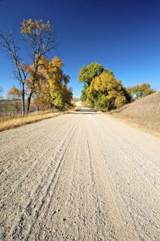 A gravel road stretches off into the horizon on a blue sky September day in Davison County.
