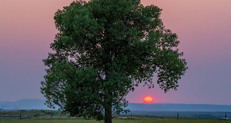 Sunset near Spearfish. Photo by John Mitchell