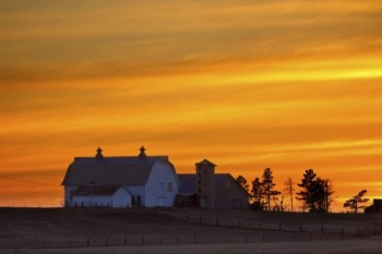 This farm scene was shot near Ardmore, South Dakota.