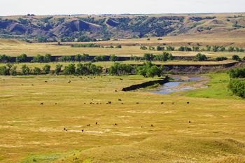 The Moreau River breaks where I grew up along the Ziebach and Dewey County line.