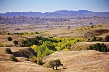 Fall colors painted the draws of Sage Creek Wilderness area in late September of last year.