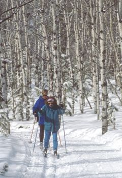 Cross-country skiiers glide through the Black Hills National Forest. Photo by SD Tourism.