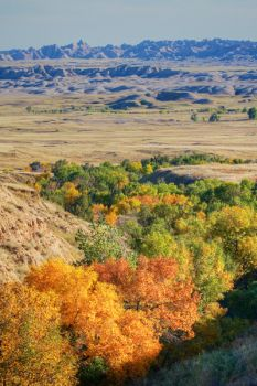Sage Creek Wilderness, Badlands National Park.