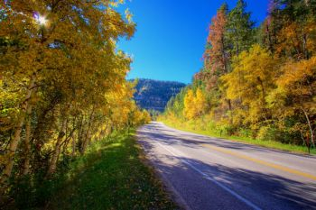 Morning light in Spearfish Canyon.
