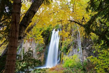 Spearfish Falls at Savoy.