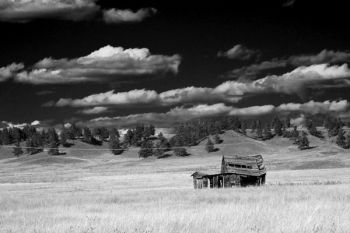 Alone on the prairies of southwestern Custer County.