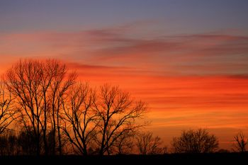 A classic November sunset taken in Clay County.