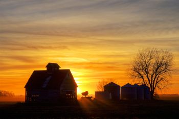 Outbuildings and grain bins along the Clay and Union County line at sunset.