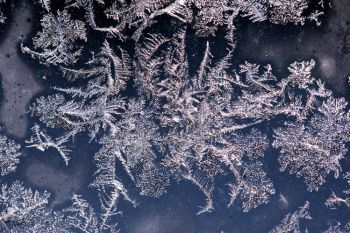Jack Frost's handiwork on my storm door window in northwest Sioux Falls.