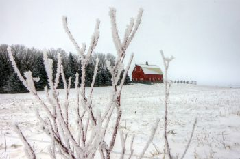 A red barn with frost and snow in rural Moody County.