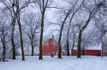 A red barn surrounded by frosty trees in southern Kingsbury County.