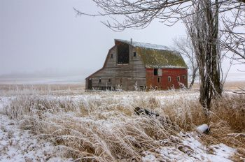 A red barn with frosted grass just west of Lake Thompson in Kingsbury County.