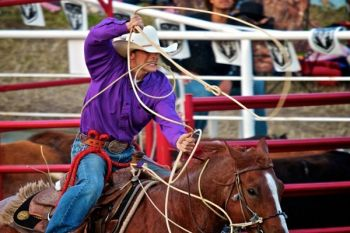Calf roping requires focus, skill and a little luck.