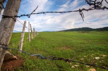 A fence line accentuates the green prairies that border the Hogback near St. Onge. Click to enlarge pictures.