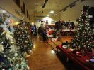 Several dozen trees decorated by businesses and organizations are the centerpieces of the holiday show.