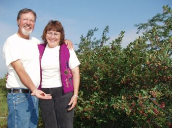 Jeff and Jolene Stewart raise aronia berries near Wagner, South Dakota. Photo by Loretta Sorenson.
