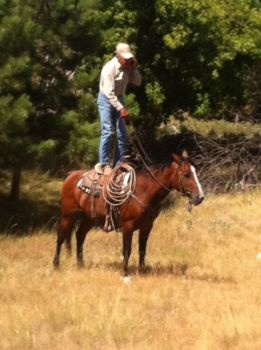 Rancher Jim Meeks uses cowboy ingenuity and a steady horse to boost his cell phone reception. Photo by Elsie Meeks.