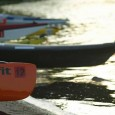 Dozens of canoeists and kayakers took part.