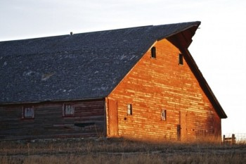 A barn north of Lake Vermillion in December.
