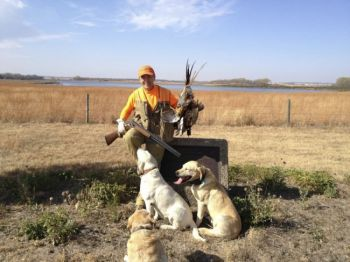 Lee's in-state opener experience yielded three roosters, three contented dogs and one happy hunter.