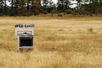 The open range, located west of Custer. Photo by <a href='http://www.dakotagraph.com/search/label/folk%20art' target='_blank'>Chad Coppess</a>.