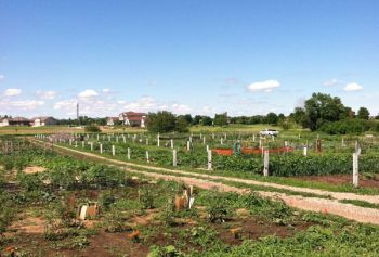 Healthy Yankton Community Garden at the beginning of the season.