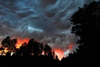 Storm clouds at sunset create a brilliant sky above the wildlife loop.