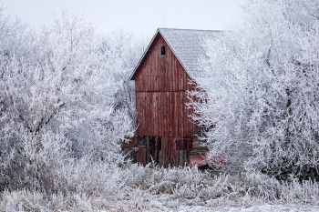 Frost with a red barn in rural Minnehaha County.