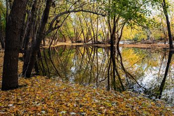 Reflections of fall at the Big Sioux Recreation Area.