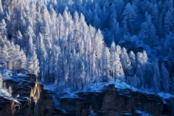 Winter solstice scene in Spearfish Canyon.