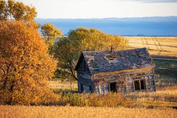 An abandoned house accented with fall color in Campbell County.