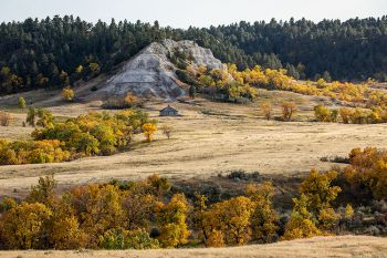 An autumn scene found south of the JB Pass road in the Slim Buttes of Harding County.