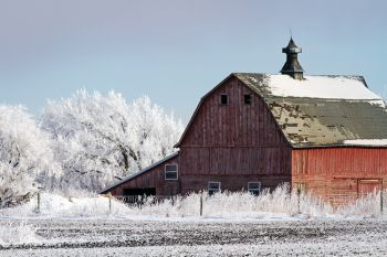 A red barn on a frosty day in rural Minnehaha County.