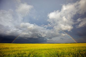 Full rainbow over prairie grass in Miner County.