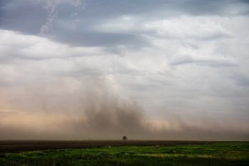 Strong winds raising farm soil high in the air in Douglas County.