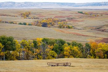 Draws filled with autumn color in southern Harding County.