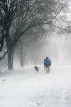 Ken Haar and his dog Bear walked down the center of a residential street during the blizzard.