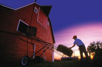 Marshall McNamara works into the night on his family's rural Hazel farm.